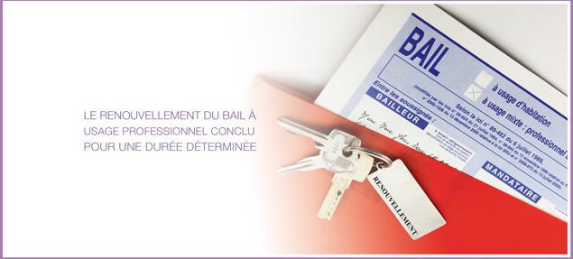 Renouvellement Du Bail A Usage Professionnel Conclu Pour Une Duree